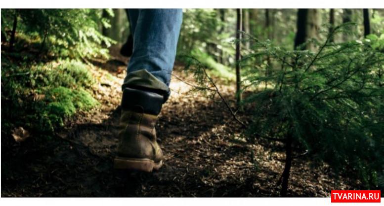 Медленная ходьба в 45 лет является свидетельством быстрого старения - исследование