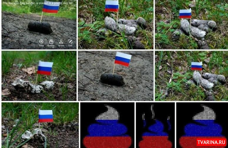 Сайт Shutterstock заблокировали в РФ за фото флажка в собачьих фекалиях