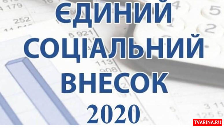 Единый социальный взнос для ФЛП 2020: сколько и куда теперь платить
