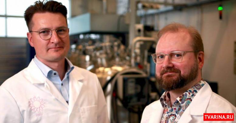 Солеин. Ученые смогли изготовить белок из воздуха и воды (2020)