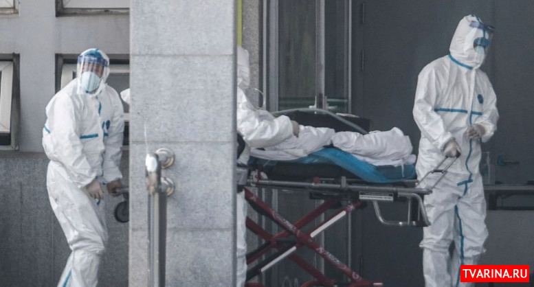 Вирус в китае 2020 (короновирус) - что это за смертельная опасность?