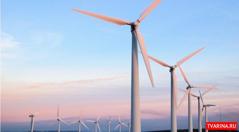 Ветрогенераторы: польза или вред для окружающей среды