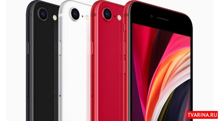 Обзор iPhone SE 2020: технические характеристики, цены и особенности новинки