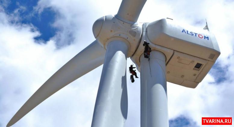 В Дании начали разработку экологического топлива