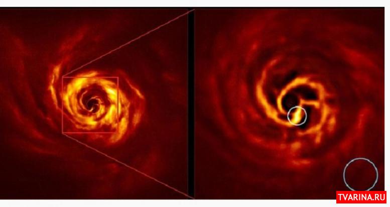 Астрономам впервые удалось увидеть формирование новой планеты