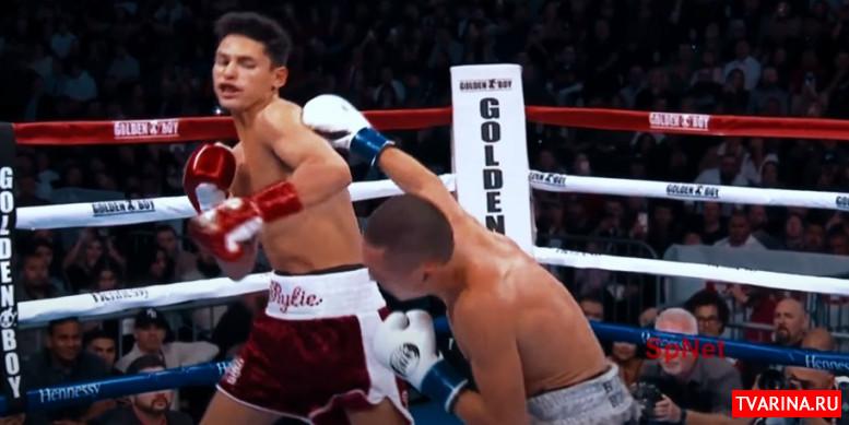 Бокс ТВ прямой эфир бесплатно — смотреть онлайн!